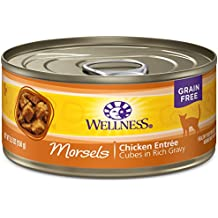 Wellness Complete Health Natural Grain Free Wet Canned Cat Food, Morsels Chicken Entrée, 5.5-Ounce Can (Pack Of 24)