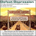 Defeat Depression: Develop a Personalized Antidepressant Strategy Audiobook by Abe Kass,  R.S.W. Narrated by Wayne June