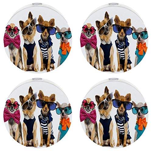 Halloween Dogs Dressed Up Girls Auto On/Off Plug-in Night Lights for Stairways, Hallway, Entryway ()