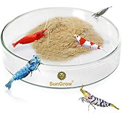 Tough Borosilicate Glass Shrimp Feed Dish - Never run out of food for shrimps - Prevent food spilling & aquarium Contamination - Heavy-duty, transparent Basin - For Shrimp Food or fish's Tubifex Worms