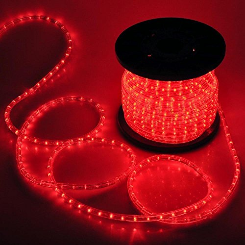 Grandey 32ft 50ft 65ft 98ft 150ft 295ft 2 wire led rope light led rope light previous next aloadofball Choice Image