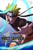 NARUTO -ナルト-  疾風伝  守護忍十二士の章 01 [DVD]