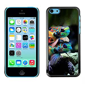 Paccase / SLIM PC / Aliminium Casa Carcasa Funda Case Cover para - Nature Fish Coral Reef Diving Colorful - Apple Iphone 5C