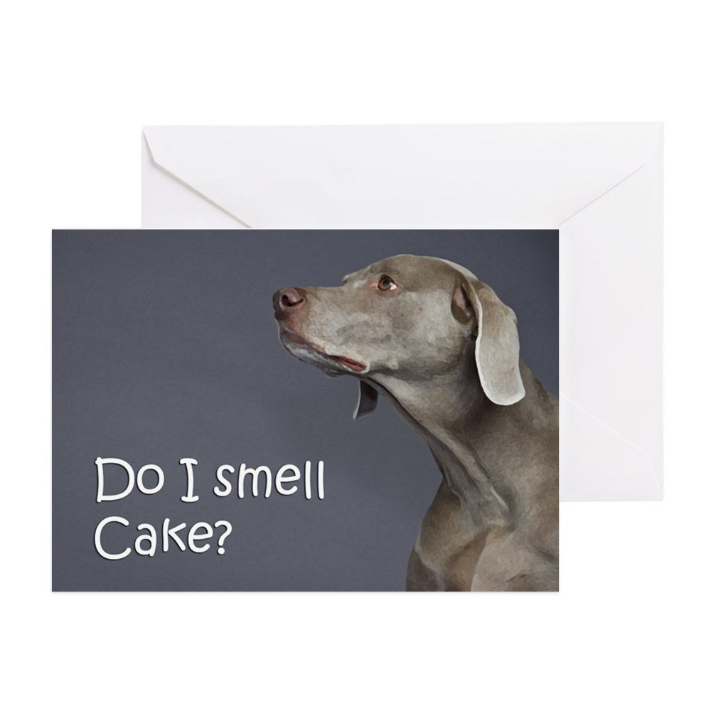 Amazon.com : CafePress - Weimaraner Birthday Card - Greeting Card ...