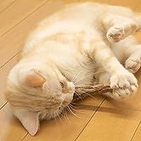 Cat Catnip Toys, Zuoao Catnip Sticks Natural Silver Vine Cat Chew Toy 6-pieces in Pack