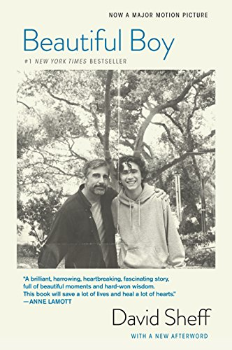Image result for beautiful boy: a father's journey through his son's addiction cover