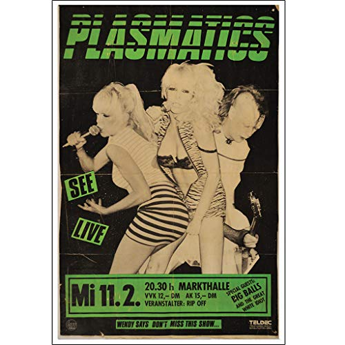 Annex Plasmatics Punk Rock Music Gig Flyer Band Poster Art Print for Framing