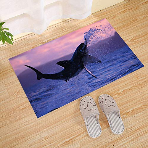Immersion Whale (JANNINSE Sunset Ocean Pink Purple Sky Black Whale Diving Play Small Door Mat, Outdoor Door Mat Rubber Front Door Outer Door Mat Garage, Patio, High Traffic Area)