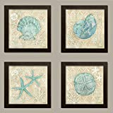 4 Lovely Teal and Brown Ocean Seashell Sand Dollar and Star Fish Collage Poster Prints; Nautical Decor, Four 12 by 12-Inch Brown Framed Prints Ready to hang!
