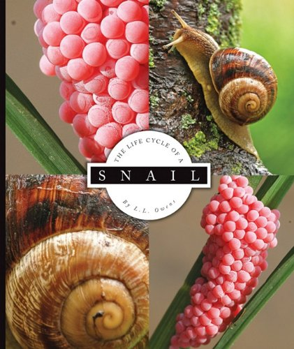 The Life Cycle of a Snail (Life Cycles) pdf