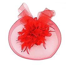 Girls Red Feather Organza Decor Hair Clip Fascinator Headwear Head Accessories