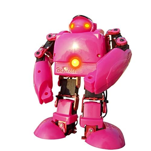 Rc Humanoid Robot
