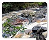 Mouse Pad - Fors Water Nature The Water Stream Stream