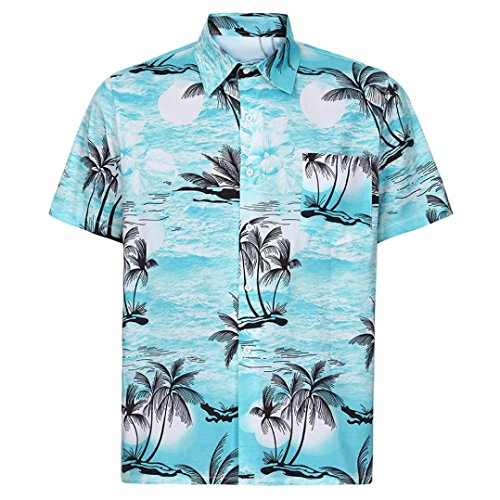 (Dacawin Men Hawaiian Shirt-Short Sleeve Front-Pocket Beach Floral Printed Blouse Top Tee (Blue, S))