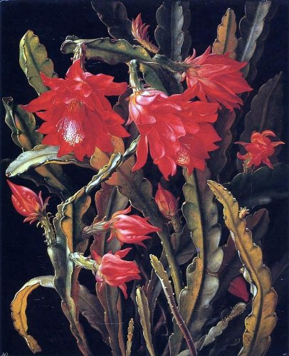 (Christian Juel Mollback Cactus with Scarlet Blossoms - 20.05