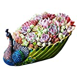 Worila Handmade Peacock Succulent Planter Pot Vintage Cactus Planter Flower Pot Succulent Container Decorative Succulent Planter (Green)