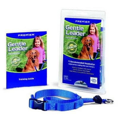 """Gentle Leader Quick Release Dog Head Collar Color: Orange, Size: Small (9"""" H x 0.75"""" W x 1.25"""" D)"""