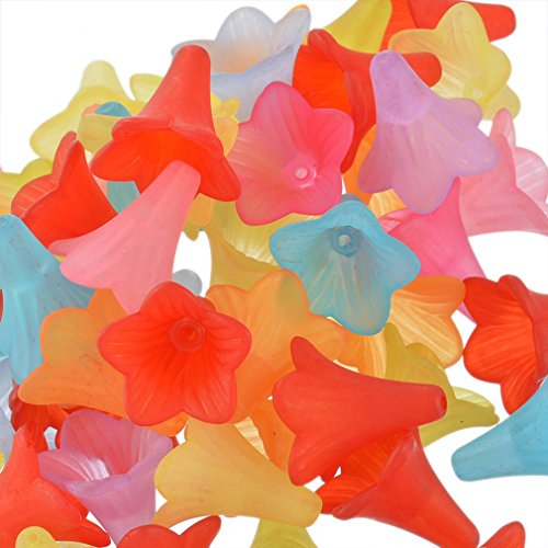 Souarts Mixed Acrylic Frosted Flower Shape Loose Beads Pack of 50pcs