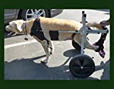 Dog Wheelchair for Large Dog (Size 5) By Huggie Cart. Approximate Weight 60-99 Lbs