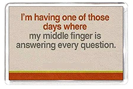 Fridge Magnet Quotes Saying Collectors Gift Present Novelty Bad Day