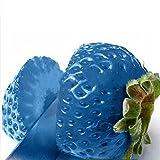 Cheap super1798 100Pcs Rare Strawberry Seeds Grow Plant Fruit Home Garden Seeds Light Blue