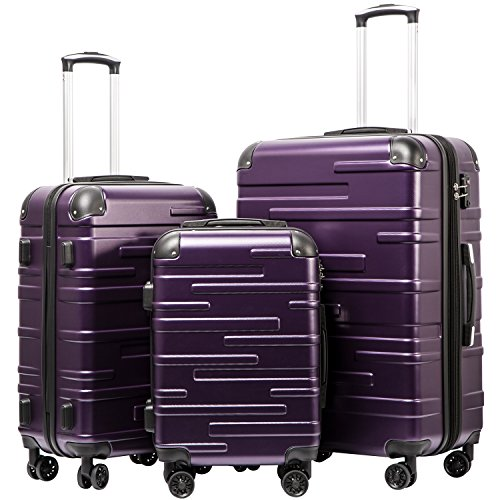 Purple Luggage Sets - 2