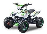 """Mini Quad Jumpy 49cc 6"""" E-Start ATV Quad Kinderfahrzeug Kinderquad Bike Pocket ... (Grün)"""
