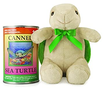 Amazon Com Canned Critters Stuffed Animal Sea Turtle 6 By Canned
