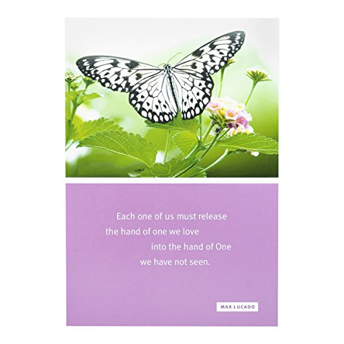 Sympathy Inspirational Boxed Cards - Max Lucado - Butterf...