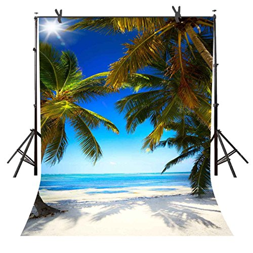 (Natural Photography Backdrops 6FTx 9FT Seaside Beach Natural Scenery Coast Tropical Photography Background Blue Sky Coconut Tree Picture for Photo Studio or YouTube TMST108)