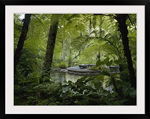GreatBIGCanvas ''Hiking Trail, Bali, Indonesia'' by Keith Levit Photographic Print with Black Frame, 36'' x 27'' by greatBIGcanvas