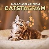 2020 Catstagram Daily Desktop Calendar