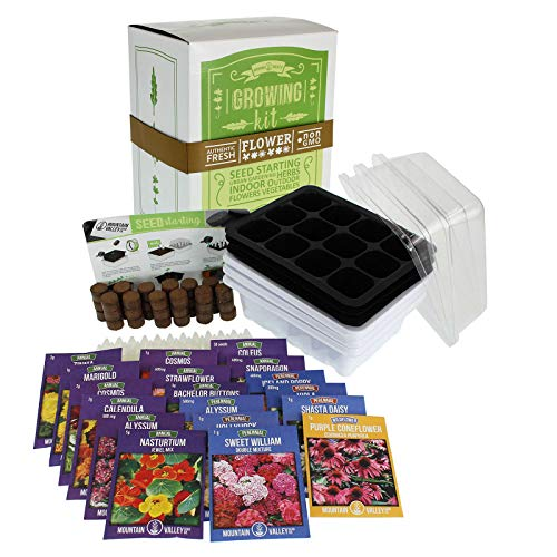 Annual Coleus (Annual Flower Garden Seed Starter Kit | Premium | 18 Varieties of Flower Seeds for Planting: Poppy, Coneflower, Snapdragon, Viola, Shasta Daisy, Coleus, Cosmos, Zinnia, Calendula & More)
