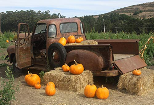 Yeele 10x8ft Farm Backdrop for Photography Autumn Harvest Festival Antique Truck Pumpkin Hay Bale Photo Background Rural Village Thanksgiving Halloween Kid Child Artistic Portrait Shoot Studio Prop]()