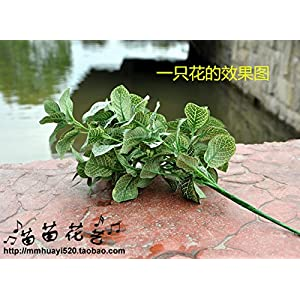 FYYDNZA 1 Pc Artificial Leaf Net Plant Leaf 40 Cm 7 Branches Artificial Plant Green Flowers Plant Grass For Home Deocration 4