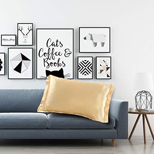 wuliLINL2019 Silk Pillowcase for Hair and Skin, Silk Bed Pillowcase with Hidden Zipper, Standard Size Pillow Cases (Gold)