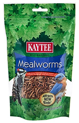Kaytee Mealworms, 3.5 oz