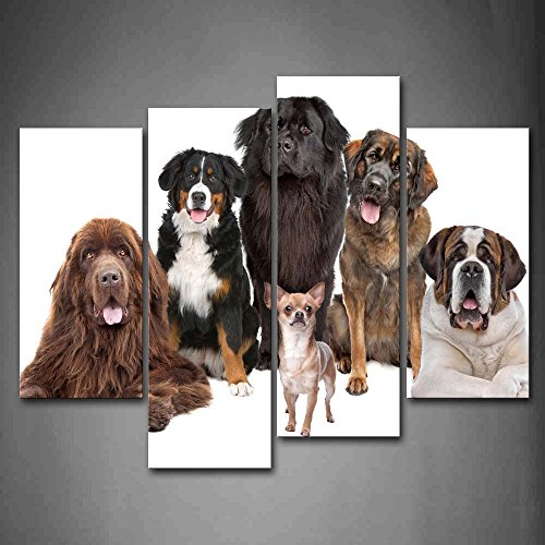 First Wall Art - Different Dogs Siting White Background Wall Art Painting The Picture Print On Canvas Animal Pictures For Home Decor Decoration Gift