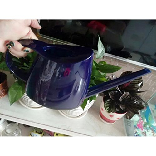 Watering Cans for House Plants Bonsai Sprinkle Water Cans Bottle Garden Spillover
