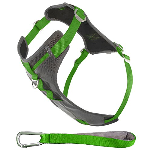 Kurgo Allagash Adventure Harness Small