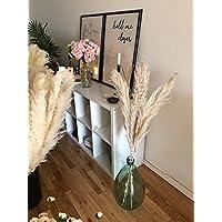 3 stems Pampas Grass Natural Fluffy Large 45'' - Home Decor, Wedding Boho Plant