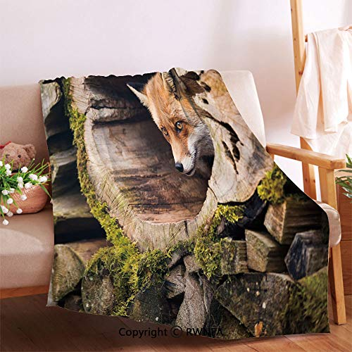 RWNFA Forest Nature Wild Fox with Hazel Eyes in a Wooden Carved Tree wth Moss Art Print Throw Blanket for Couch.Anti-Wrinkle Function, Suitable for Living Room Sofa(32