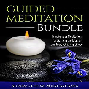 Guided Meditation Bundle Speech