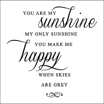 Amazoncom You Are My Sunshinesunshine Wall Quotes Words