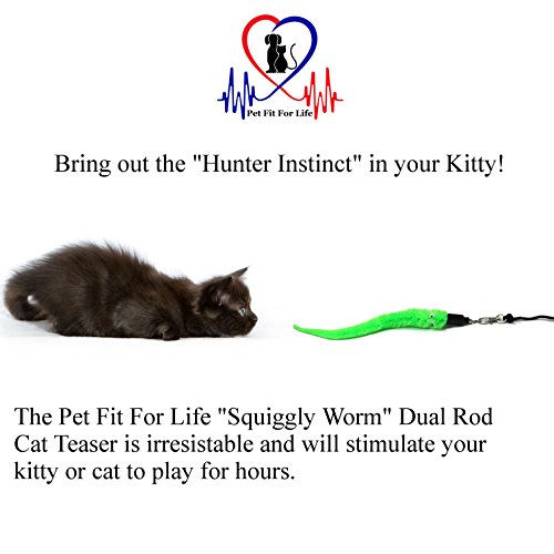Pet Fit For Life 5 Piece Worms Teaser and Exerciser for Cat and Kitten - Cat Toy Interactive Cat Wand 4