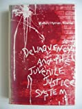 Juvenile Delinquency and the Juvenile Justice System, Daniel Katkin, 0878721045