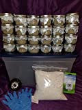 Super Mushroom Growing Kit 24 Jars!