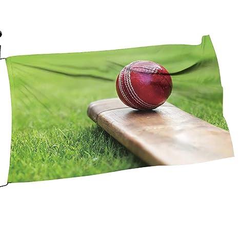 Amazon com : Big datastore Garden Flag Pole Cricket Ball