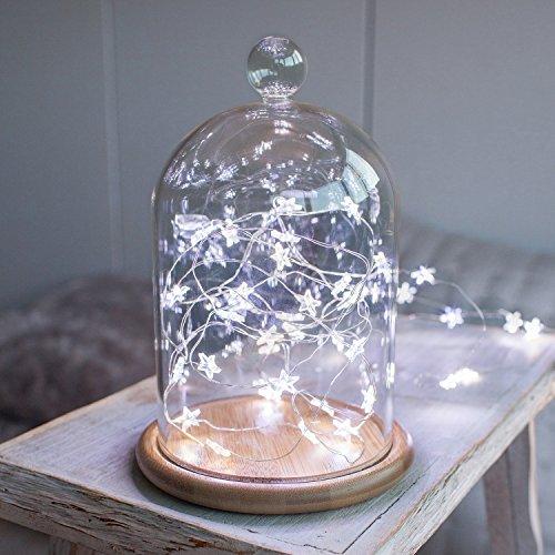 Deko Glasglocke mit 40er LED Stern Micro Lichterkette weiß Weihnachtsdeko Lights4fun