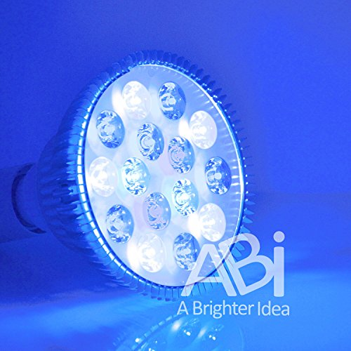 ABI LED Aquarium Light Bulb, 23W Blue and White PAR38